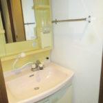 独立洗面台はシャワー付きです(玄関)