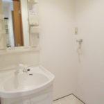 洗面脱衣所 独立洗面台はシャワー付き